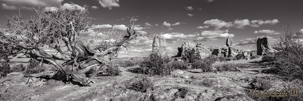 Balance Rock in the Arches National Park, America. Michael Scott Lees fine art photographic prints for sale