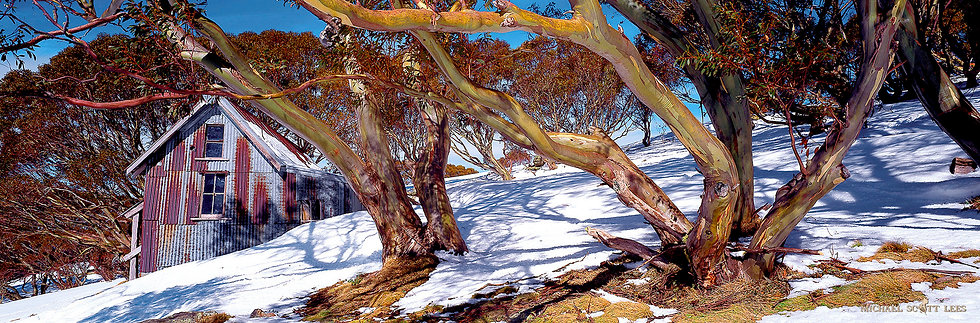 Cope Hut in Alpine National Park, Australia. Fine Art Photography Prints for Sale by Michael Scott Lees photographer.