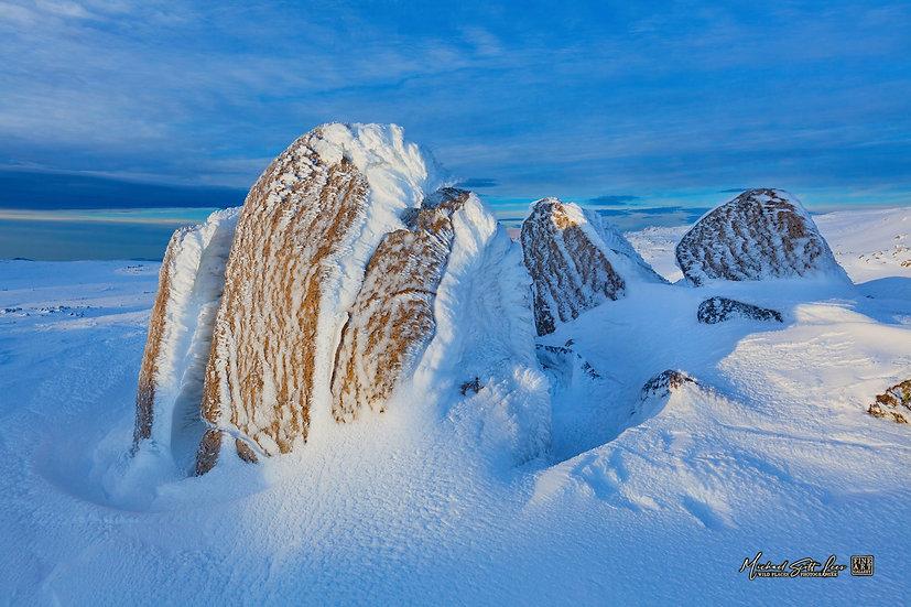 Near Etheridge Ridge, Kosciuszko National Park, Australia - Code: SN7611SFAL