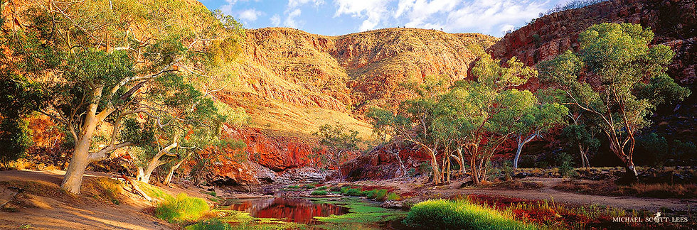 Outback Billabong called Ormiston Gorge, Australia. Fine Art Photography Prints for Sale by Michael Scott Lees photographer.