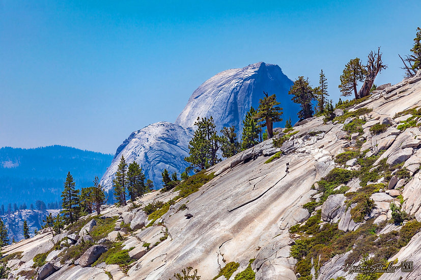 View of Half Dome in Yosemite National Park, America. Michael Scott Lees fine art photographic prints for sale