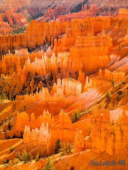 Sunrise Point at Bryce Canyon National Park, America. Michael Scott Lees fine art photographic prints for sale