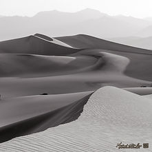 DE6575631SQT - WIND AND SAND.jpg
