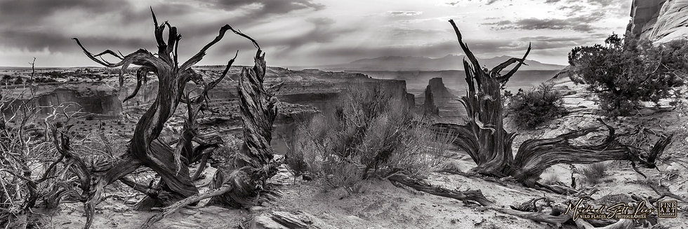Black and white photo of Canyonland National Park, America. Michael Scott Lees fine art photographic prints for sale