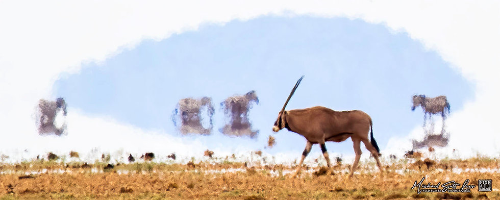 Oryx in a heat wave crossing a dead lake in Amboseli National Park, Michael Scott Lees fine art photographic prints for sale
