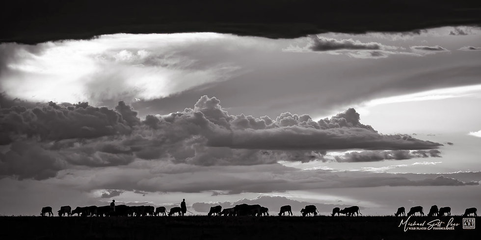 Maasai herdsmen and cattle silhouetted by storm clouds in Amboseli National Park, Kenya, Africa, Michael Scott Lees fine art