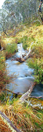 Murray creek in the Kosciuszko National Park, Australia. Fine Art Photography Prints for Sale by Michael Scott Lees photograp