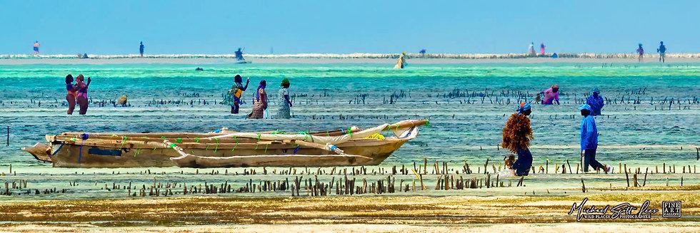 Coastal life in Zanzibar, Tanzania, Africa, Michael Scott Lees fine art photographic prints for sale