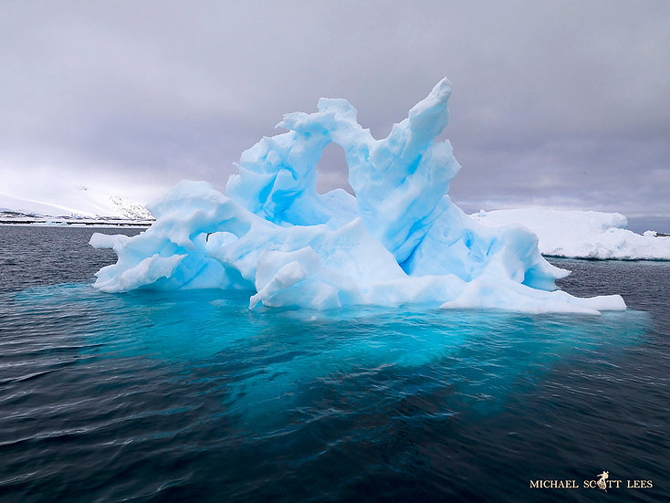 Iceberg floating around the South Shetland Islands, Antarctica. Fine Art Photography Prints for Sale by Michael Scott Lees ph