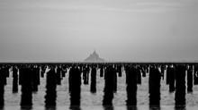 Balade mytilicole dans la baie du Mont-Michel
