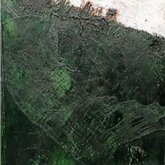 Green Deep, 2007