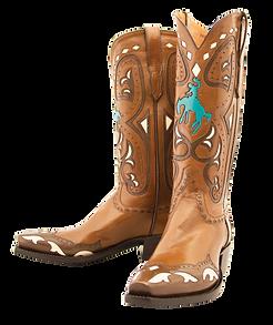 Cowboy-Boots-PNG-Photo.png