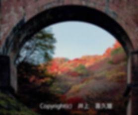 2B INOUE-井上:眼鏡超しの秋.jpg