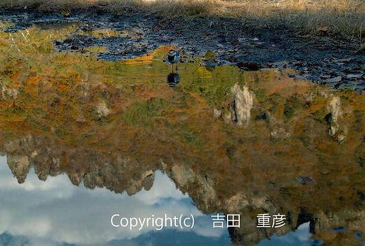 2C Yoshida 吉田:水鏡.jpg