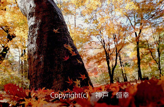 2B Kanbe-神戸:地に還る.jpg