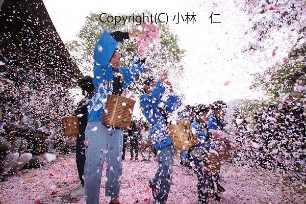 第3期 kobayasi hitosi 花吹雪2U1A0176.jpg