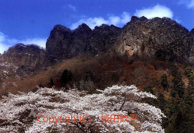 13shrota城田 奇岩と桜.jpg