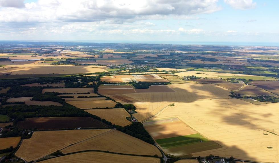 Fields of Northbourne