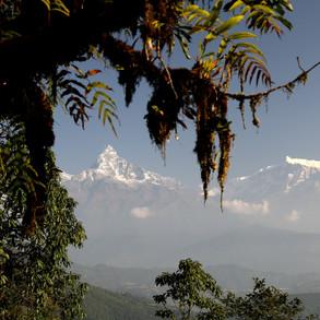 2019-nepal-trip_49121509181_o.jpg