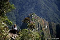 PERU, Dáša