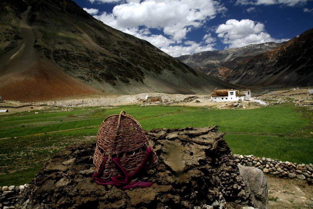 LADAKH Zanskar Tanzo