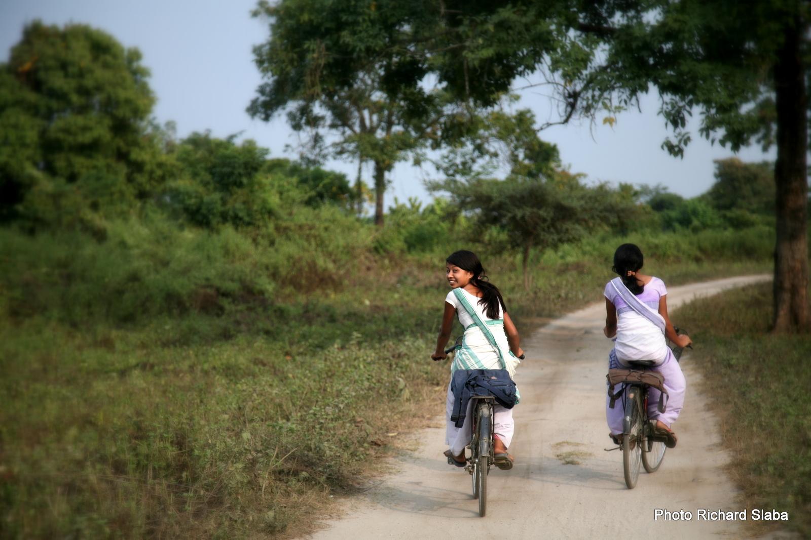 Indie Assam