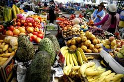 EKVADOR trh