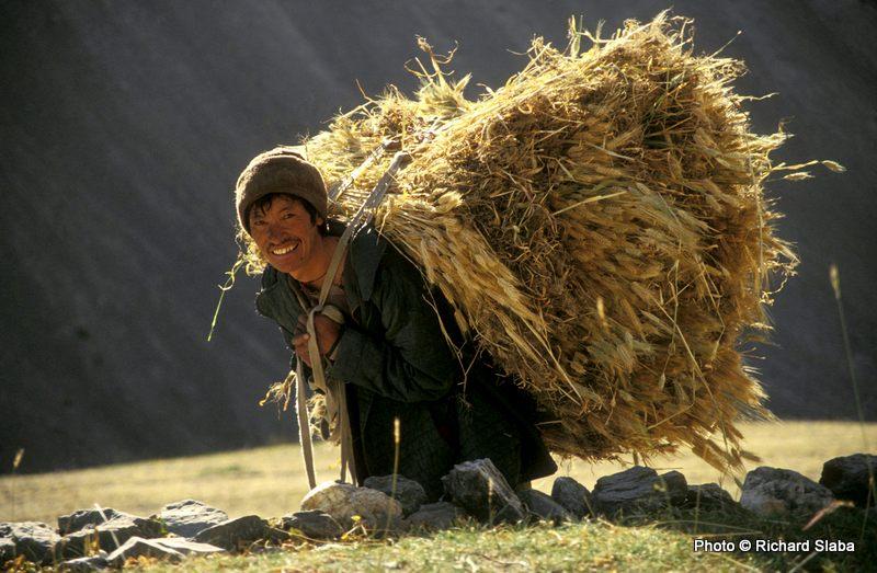 YAL-Temba_Namgyal_s_balíkem_obilí.jpg