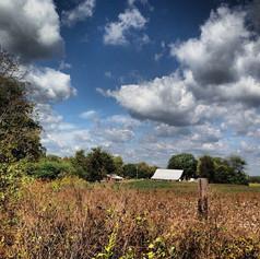 Old Baker Farm