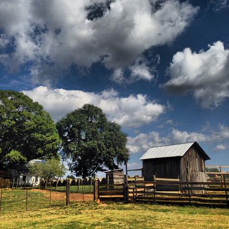 Old Baker Farm, AL