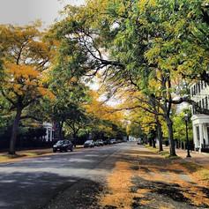 Chesnut Street - Salem, MA