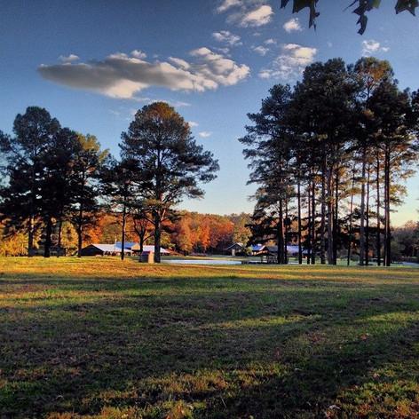 Sunshine Farm - Sterrett, AL