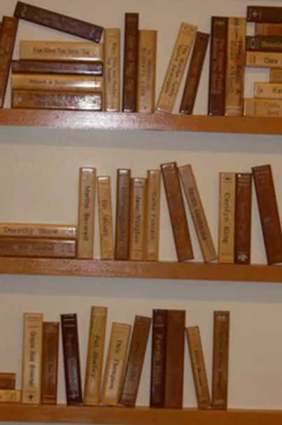 Adult's Area Wooden Book Spines