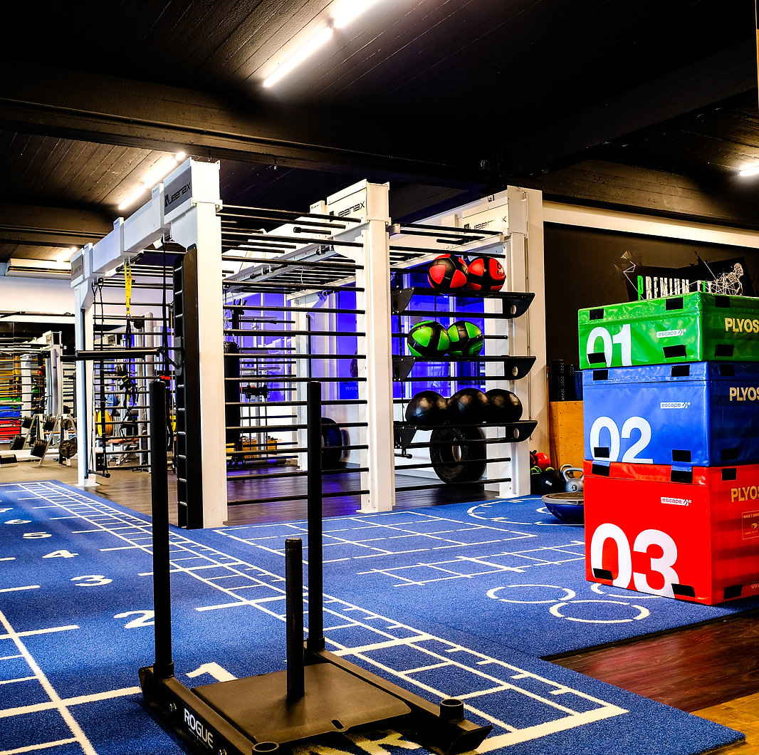 Espace fonctionnel salle fitness