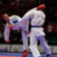 Karate photo_thumb.png
