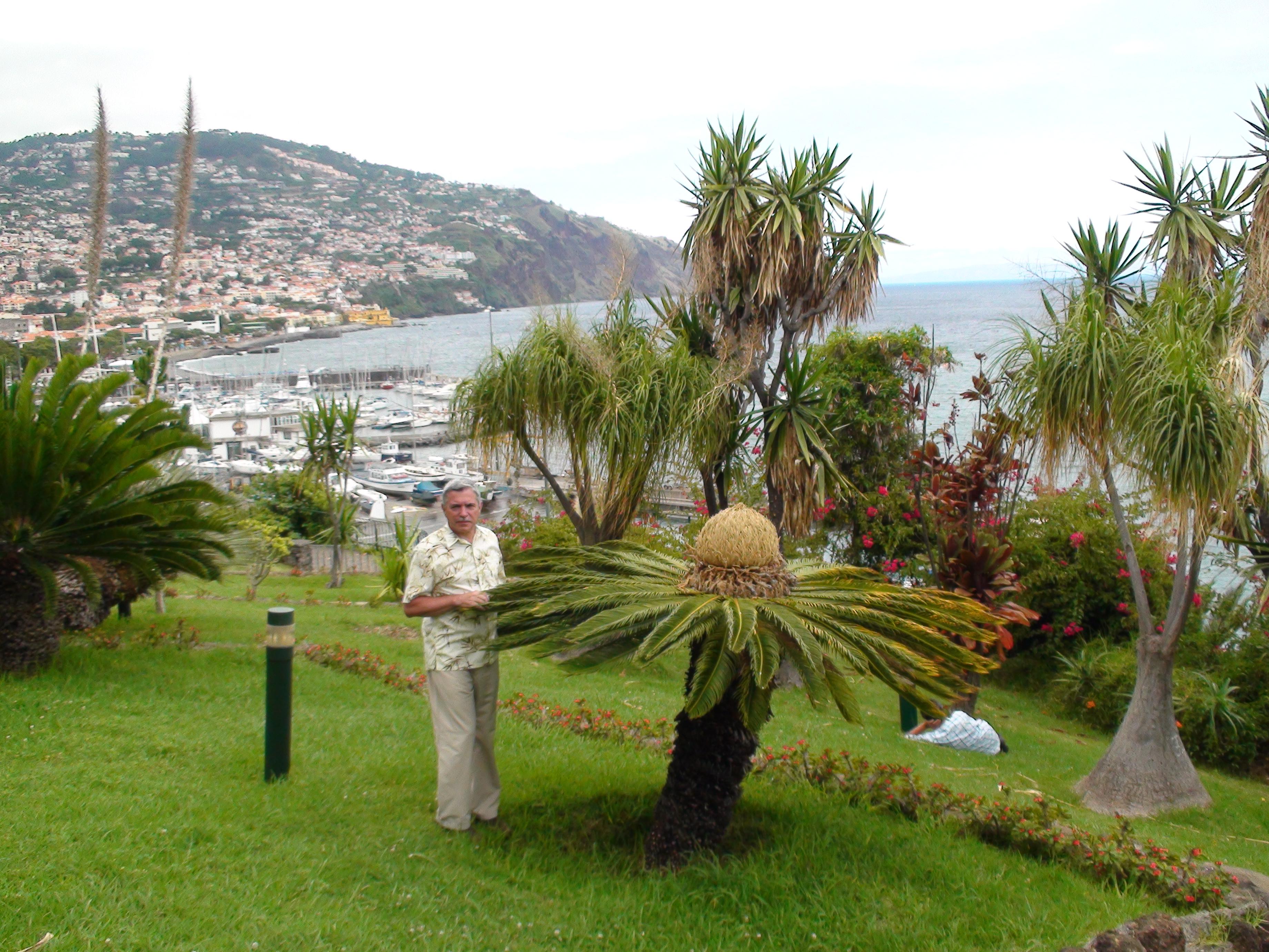 Мадейра Фото 4
