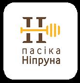 7_LOGO_Plashka_Pasika-N.png