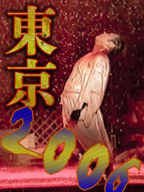 【DVD】「近江飛龍劇団アーカイブVol.7」東京2006