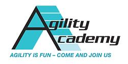 Agility Academy.png