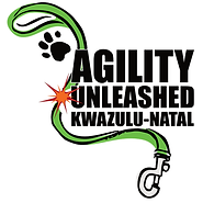 Agility Unleashed Final.png