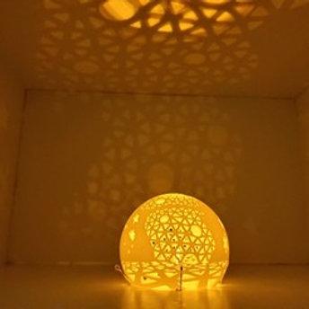 LAMP L1