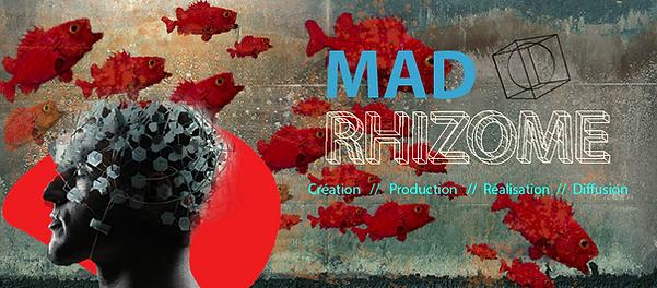 Light Art | France | Light Art | France | Mad rhizome Production