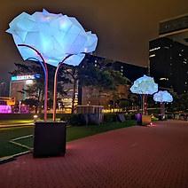 #Souvenir #cloudylanterns #madrhizome