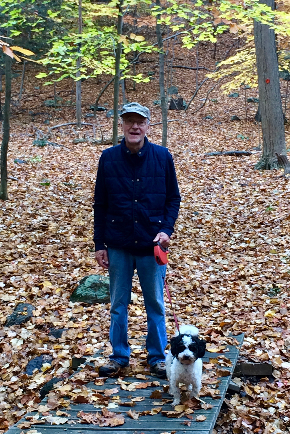 Man for walk with his dog after recovering from knee pain with acupuncture treatments