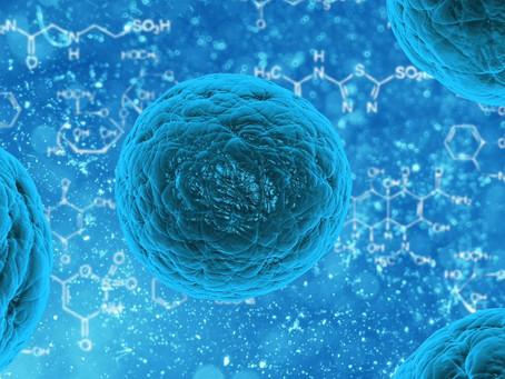Coronavirus - Will it affect IT work?