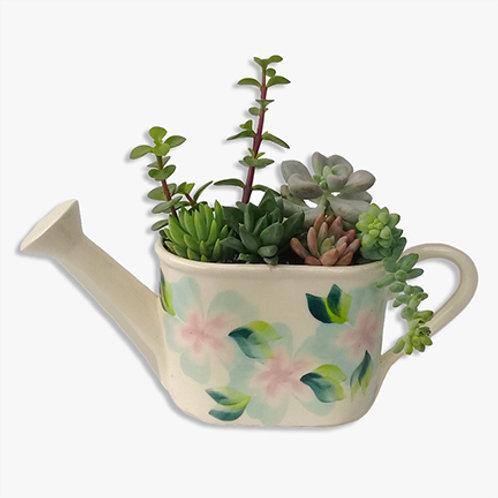 Regadera blanca con plantas suculentas