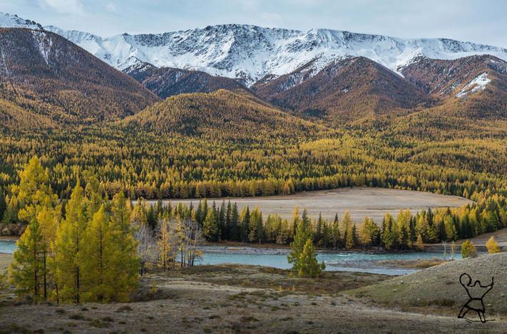 Chuya. Altai.