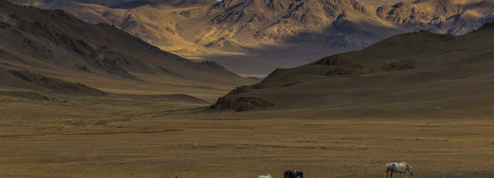 Mongolia. Altay.