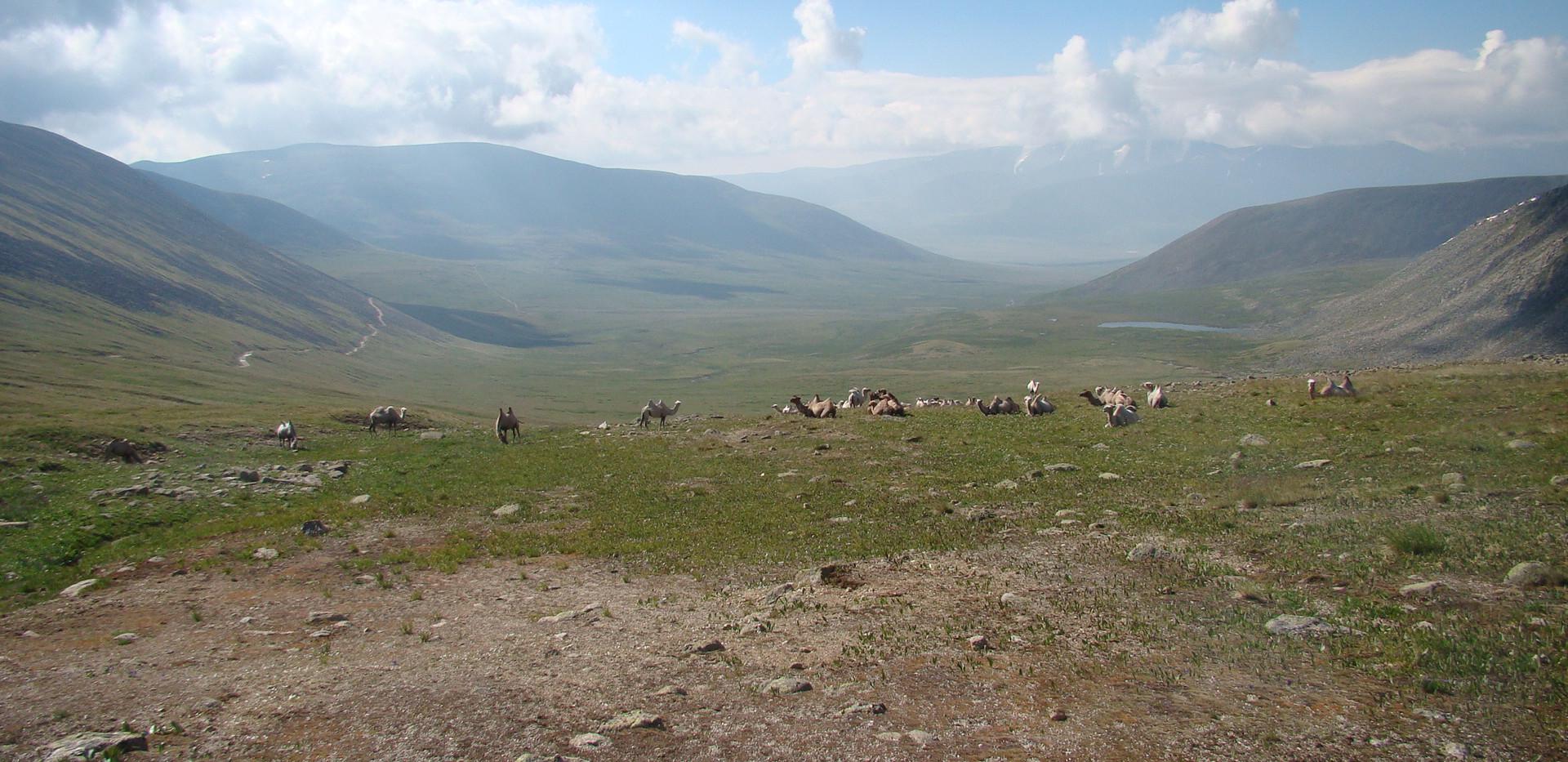 Перевал Теплый Ключ. Алтай-Этнотур.