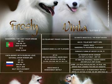 Ninhada C - Frosty e Vinta